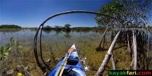 Craigshead Pond Canoe trail, ENP