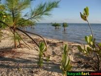 East Florida Bay