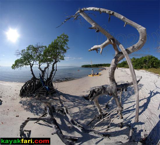 Camp Lu Lu, Ten Thousand Islands beach 10 000 florida