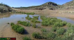 """On the Rio Grande - New Mexico"" :: Kayakfari.com Flex Maslan"