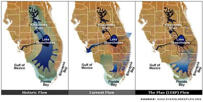 Water flow through the Everglades Hydro System: past, present & future?