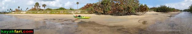 Flex Maslan kayak Whiskey Creek John Lloyd kayakfari snorkel beach florida Mizell-Johnson park paddle urban panorama
