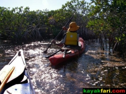 Craighead Pond kayakfari everglades maslan mangrove enp slough 029 canoe kayak digital029art research platform