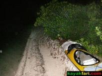 Miami Flamingo kayakfari florida bay flex maslan 029 digital029art short key dragover turkey point key largo keys everglades kayak nest key black betty end key shark point chickee paddlle kayakfari.com digital029art.com