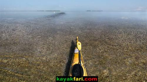Across Florida Bay Everglades camping Flex Maslan Little Rabbit Key Long Key Flamingo kayakfari canoe kayak adventure outback flats bank Keys primitive