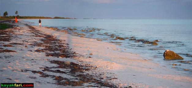Bahia Honda Keys kayakfari kayak camp 7 mile bridge beach coral reef
