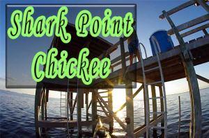 Kayaking to the Shark Point Chickee - kayakfari