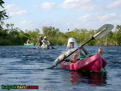 Bill Ashley Jungle Herman Lucerne backcountry Mahogany Hammock Hells Bay canoe kayak trail everglades enp kayakfari mangroves panorama Flex Maslan