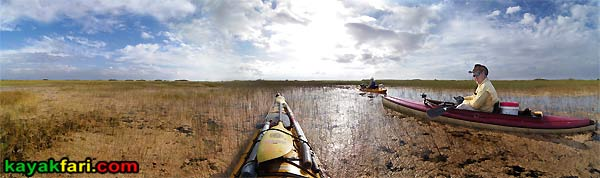 Shark River Slough Everglades expedition camping River of Grass kayakfari Flex Maslan sawgrass marshall foundation periphyton