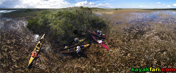 Shark River Slough Everglades expedition camping River of Grass kayakfari ART Flex Maslan kayak canoe sawgrass aerial birdseye view panorama