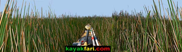Shark River Slough Everglades expedition camping River of Grass kayakfari ART Flex Maslan kayak canoe sawgrass rush spike