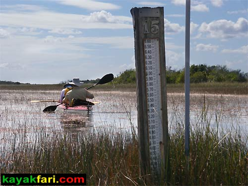 Shark River Slough Everglades expedition camping River of Grass kayakfari Flex Maslan marshall foundation kayak canoe sawgrass water depth level gauge