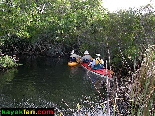Shark River Slough Everglades expedition camping River of Grass kayakfari Flex Maslan marshall foundation kayak canoe sawgrass bottle creek