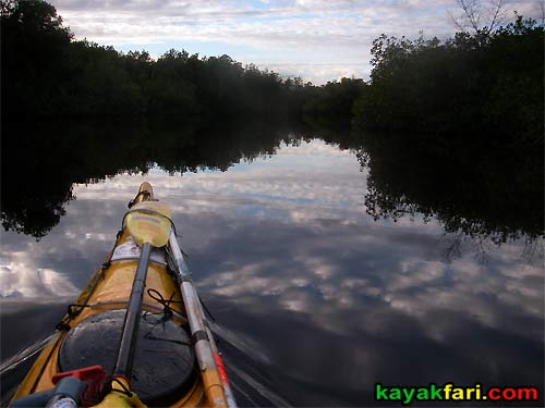 Shark River Slough Everglades expedition camping River of Grass kayakfari Flex Maslan marshall foundation kayak canoe sawgrass rookery branch