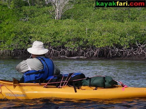 Shark River Slough Everglades expedition camping River of Grass kayakfari Flex Maslan marshall foundation kayak canoe sawgrass alligator gator