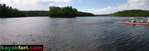 Shark River Slough Everglades expedition camping River of Grass kayakfari Flex Maslan marshall foundation kayak canoe sawgrass shark river harney river