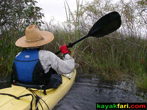 Shark River Slough Everglades expedition camping River of Grass kayakfari Flex Maslan marshall foundation kayak canoe sawgrass