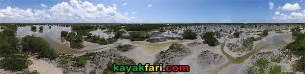 Gopher Creek Charley kayakfari everglades rookery bay mud mangrove birds