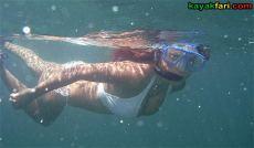 Whiskey Creek John U Lloyd kayakfari florida kayak beach snorkel