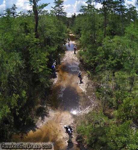 Big Cypress aerial awakenthegrass pole photography flex maslan everglades hike Addition Lands awakenthegrass hiking camp kayakfari backcountry environment camping outback florida