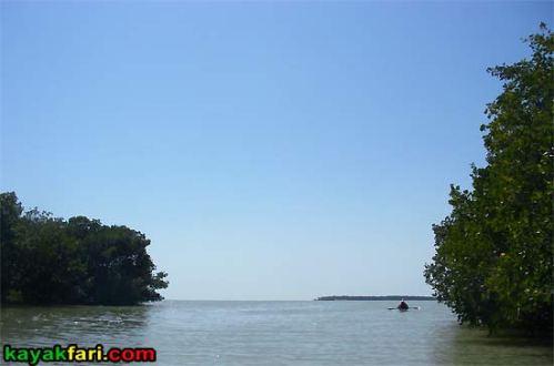 Charley Creek kayakfari everglades rookery bay mud flex maslan mangrove exit gulf