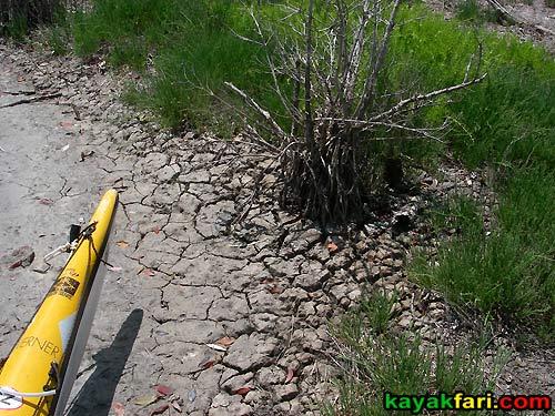 Gopher Key kayakfari everglades calusa shell mound indian conch clam flex maslan