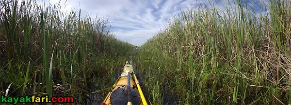 East Everglades Grass kayakfari canoe paddle Expansion Area airboat camp addition lands kayak Flex Maslan