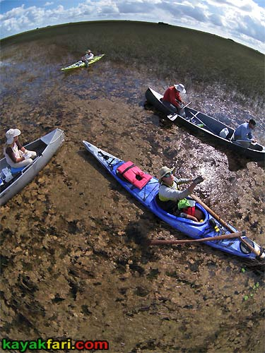 Flex Maslan Pahayokee Everglades kayakfari Shark river aerial photo Slough Kayak Canoe grass paddling