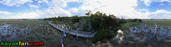 Flex Maslan Pahayokee Everglades kayakfari Shark river aerial photo panorama Slough Kayak Canoe grass paddling