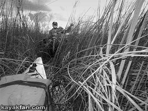 Flex Maslan Pahayokee Everglades kayakfari Shark river photo Slough Kayak Canoe sawgrass paddling