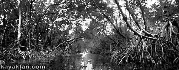 Flex Maslan Coot Bay Interior kayakfari Everglades Canoe raulerson prairie trail spoonbill pass photography kayak