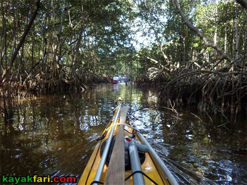 Flex Maslan Spoonbill Pass Interior kayakfari Everglades Canoe raulerson prairie trail spoonbill pass photography kayak