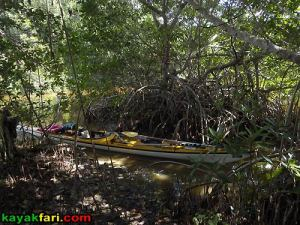Flex Maslan Gator Lake aerial kayakfari Everglades Canoe raulerson prairie trail spoonbill pass photography kayak