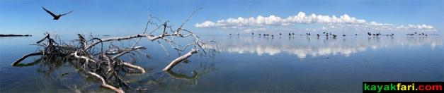 kayakfari photography art Florida Bay aerial kayak Everglades Flex Maslan landscape panoramic print sea Flying over Florida Bay