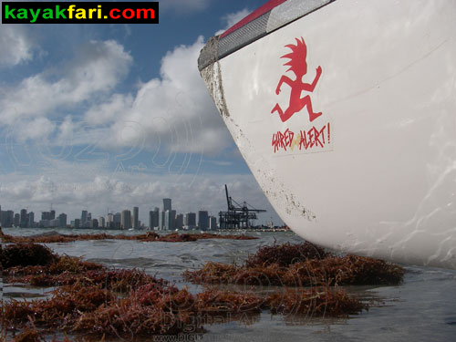 Florida miami surfski kayak kayakfari Flex Maslan kayakfari.com Adventure Art Fitness shred alert surf ski