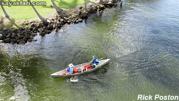 Miami River kayakfari Okeechobee Everglades canoe expedition paddle Flex Maslan River of Grass 2014 kayak florida