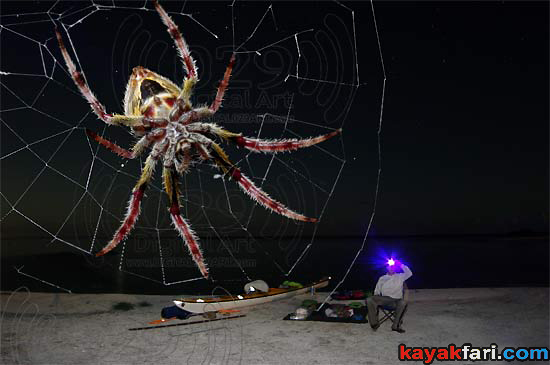 Flex Maslan kayakfari photographer kayak camping stars night Everglades landscape pano print art Florida Bay slough shark halloween nightmare surprise spider