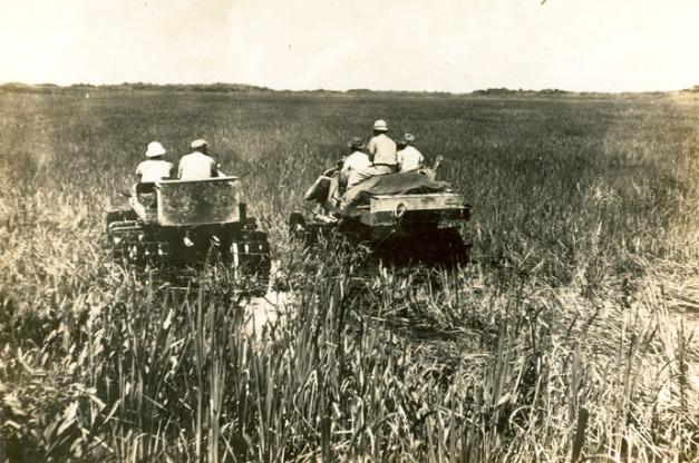 EVER_15177 Glades buggy full track swamp buggy NPS kayakfari awakenthegrass flex maslan