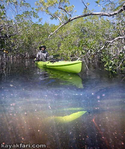 Flex Maslan kayakfari.com Bill Ashley Jungle Herman Lucerne backcountry Paurotis Pond kayakfari aerial Hells Bay canoe kayak trail everglades mangroves invitational 2014