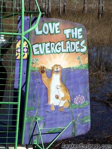 Flex Maslan Everglades airboat kayakfari grass Miccosukee paddle photography 3A kayak sawgrass canoe dugout photo awakenthegrass love the everglades otter clan