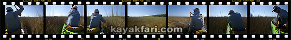 Flex Maslan kayakfari awakenthegrass kayak shark valley everglades paddling tree hammock seagrape sawgrass willoughby key 1898 panorama 360