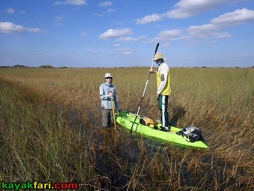 Flex Maslan kayakfari awakenthegrass kayak shark valley everglades paddling tree hammock seagrape sawgrass willoughby key 1898 trail
