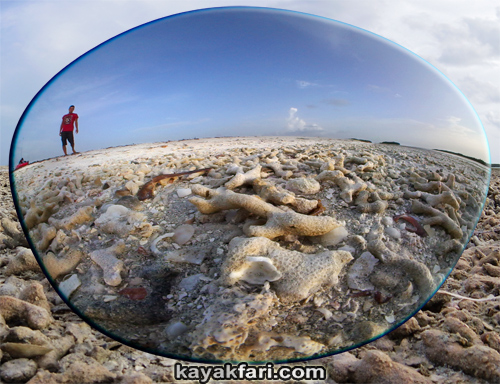 flex maslan kayakfari Barracuda Keys marvin shoal sandbar kayak paddle sugarloaf backcountry beach bay coral reef photography fisheye