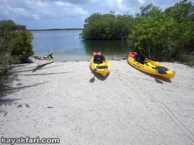 flex maslan kayakfari Barracuda Keys marvin shoal sandbar kayak paddle sugarloaf backcountry beach bay coral reef photography marina launch