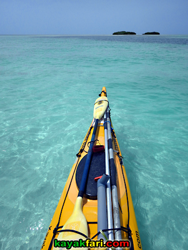 flex maslan kayakfari Barracuda Keys marvin shoal sandbar kayak paddle sugarloaf backcountry beach bay coral reef photography aqua colors
