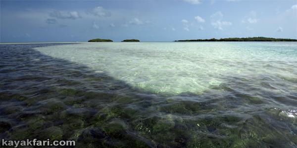 flex maslan kayakfari Barracuda Keys marvin shoal sandbar kayak paddle sugarloaf backcountry beach bay coral reef photography aqua colors