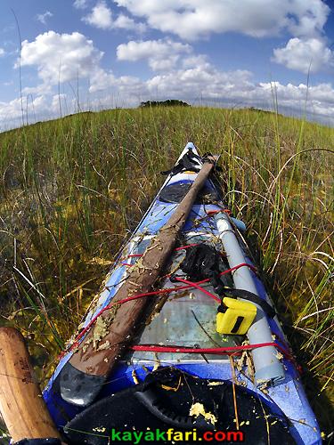 Flex Maslan Taylor Slough kayakfari everglades photography River of grass paddling kayak canoe craighead pond airboat trail florida fisheye