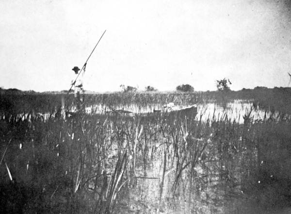 Flex Maslan Taylor Slough kayakfari everglades skiff Glades River of grass paddling kayak canoe 1913 poling history