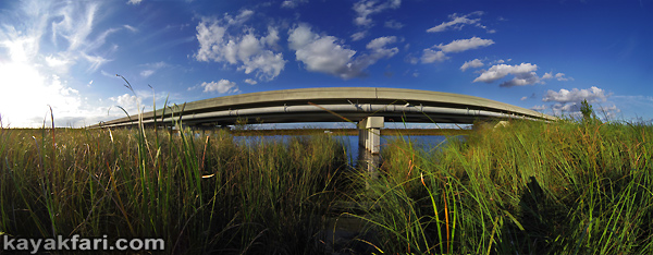 Flex Maslan Shark River Slough Everglades photography skyway bridge kayak River Grass kayakfari environment paddle water sfwmd restoration tamiami trail panorama