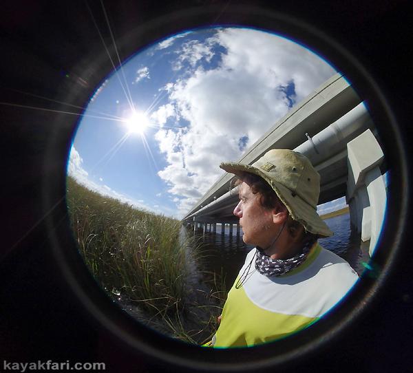 Flex Maslan Shark River Slough Everglades photography skyway bridge kayak River Grass kayakfari environment paddle water sfwmd restoration tamiami trail